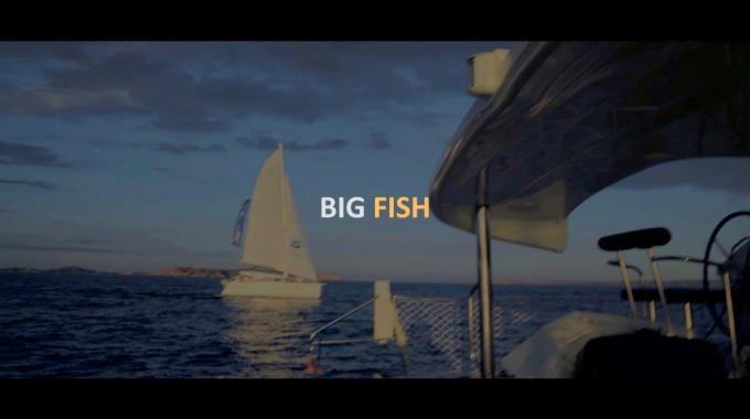 BIG FISH или как получить крутой бизнес-улов